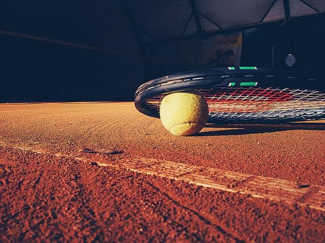 Estimación del impacto económico en la Comunitat Valenciana del evento deportivo Copa Davis